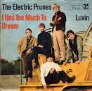 I Had Too Much to Dream (Last Night) by The Electric Prunes