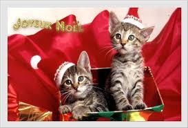 Bonnes fêtes de fin d'année 2012 ! Images?q=tbn:ANd9GcSNwEE9jOKQvz4jyO-rkqEW5RBLd9vpnhv6R0YR-wHLtMy9YNaqvQ