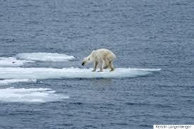 CURL  Irony alert  Global warmists get stuck in ice   Washington Times Courtney Jordan