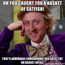 OH YOU CAUGHT YOU A BASKET OF CATFISH! THAT'S ADMIRABLE ... via Relatably.com