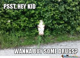 Mad Cow Memes. Best Collection of Funny Mad Cow Pictures via Relatably.com