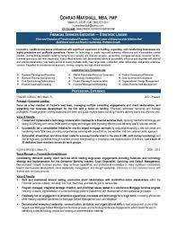 resume samples elite resume writing finance resume sample provided by elite resume writing services