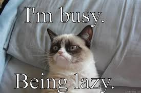 Busy-Being-Lazy.jpg via Relatably.com