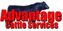 Advantage Cattle Services, Classified Ads Semen Page