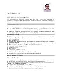 sample cv s executive junier s professional
