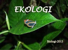 Hasil gambar untuk ekologi