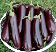 Image result for organic eggplant images