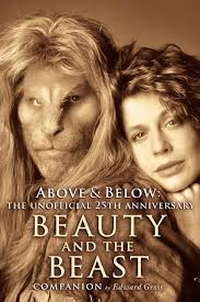above below a th anniversary beauty and the beast companion above below a 25th anniversary beauty and the beast companion edward gross 0884112132305 books ca