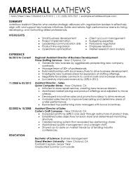 best assistant director resume example livecareer create my resume