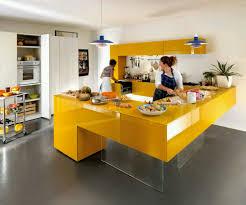 design pictures dark cabinets image modern