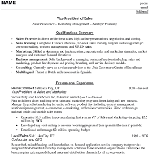 Vice President Sales Resume Example   Download Sample Resume Free Resume Examples Note