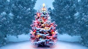 History of <b>Christmas</b> Trees - HISTORY