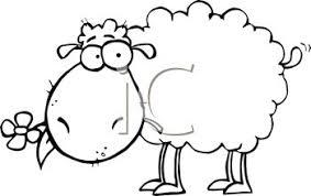 Image result for گوسفند کاریکاتوری