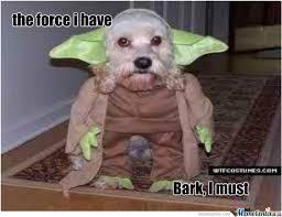Bark Yoda Dog Force Starwars Memes. Best Collection of Funny Bark ... via Relatably.com