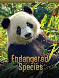 should we save land for endangered animals essay