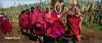 Image result for tanzania