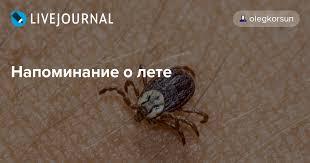 <b>Напоминание о лете</b>: olegkorsun — LiveJournal