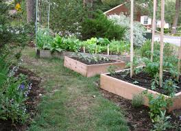 Kitchen Garden Sprouter Similiar Kitchen Garden Keywords