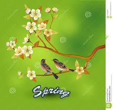 Vector <b>sakura</b> . <b>postcard</b>. stock vector. Illustration of beauty ...