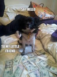 Say hello to my little friend - cute animal dog money meme - quickmeme via Relatably.com