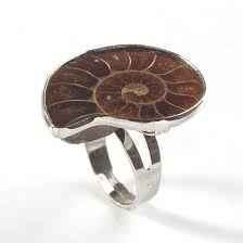 <b>Trendy beads Unique Silver</b> Plated Adjustable Ammonite Ring ...