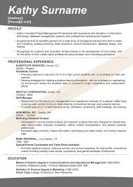 best resume profile statements professional resume cover letter best resume profile statements how to write a great profile statement for your resume resume headline