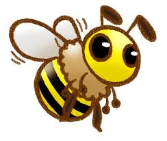 Image result for honeybee