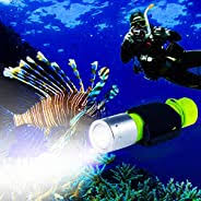 Diving Lights: Sports & Outdoors - Amazon.ca