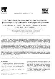 (PDF) The nickel hyperaccumulator plant Alyssum bertolonii as a ...
