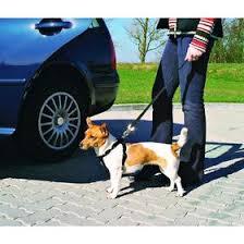 <b>Автомобильный ремень</b> безопасности со шлейкой <b>Trixie</b> для ...