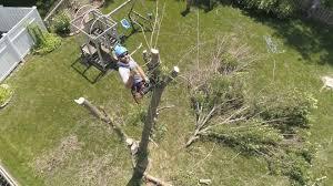 <b>Spring</b> & <b>Fall</b> Clean Up Yard Landscaping Services