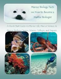 marine biology facts on how to become a marine biologist a quick start guide on marine marine biologist job description and salary