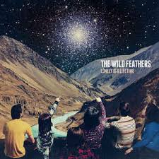 The <b>Wild Feathers</b> - <b>Lonely</b> Is A Lifetime (2016, CD) | Discogs
