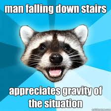man falling down stairs appreciates gravity of the situation ... via Relatably.com