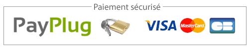 """Résultat de recherche d'images pour """"petit logo payplug"""""""