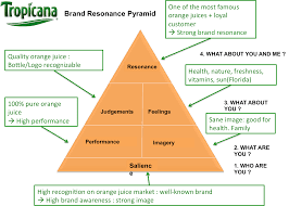 kapferer brand identity prism google search books biz brand resonance pyramid for tropicana