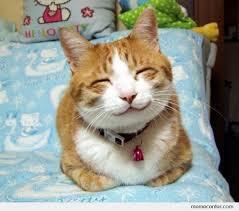 Smiling Cat by ben - Meme Center via Relatably.com