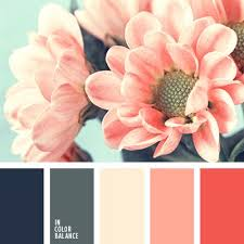 kitchen colors images: in color balance     n nun page