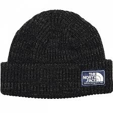 <b>Шапка THE NORTH FACE</b> SALTY DOG BEANIE FW18 купить в ...