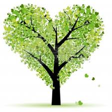 Image result for tree images clip art