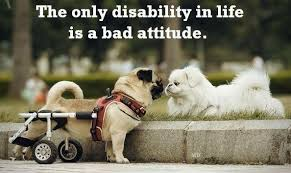 Love That Max : The paradox of disability inspiration and may I ... via Relatably.com