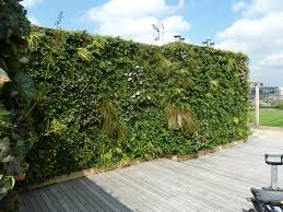 living wall biotecture category courtyards amp lightwells client private client installed