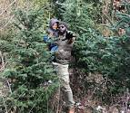 Cut Your Own <b>Christmas Tree</b> Farms + Locations Where You'll Find ...