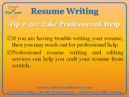 guidelines for writing a professional resume   cv   career    professional resume service in india