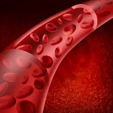 Движение крови