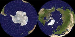 Image result for arctic and antarctic