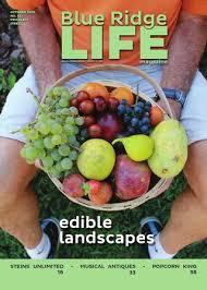 Blue Ridge Life, Issue #127