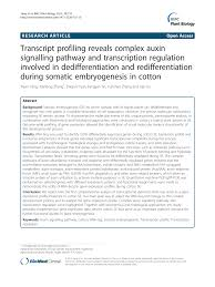 (PDF) Transcript profiling reveals complex auxin signalling pathway ...