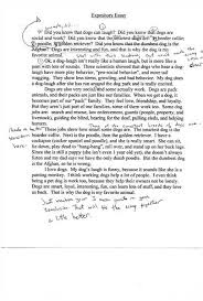 example of short expository essay free essayscohesion and coherence in short expository essays