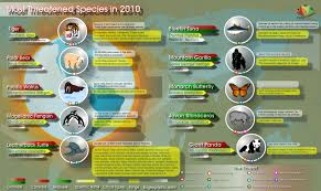 essay on the ldquo threatened species rdquo in